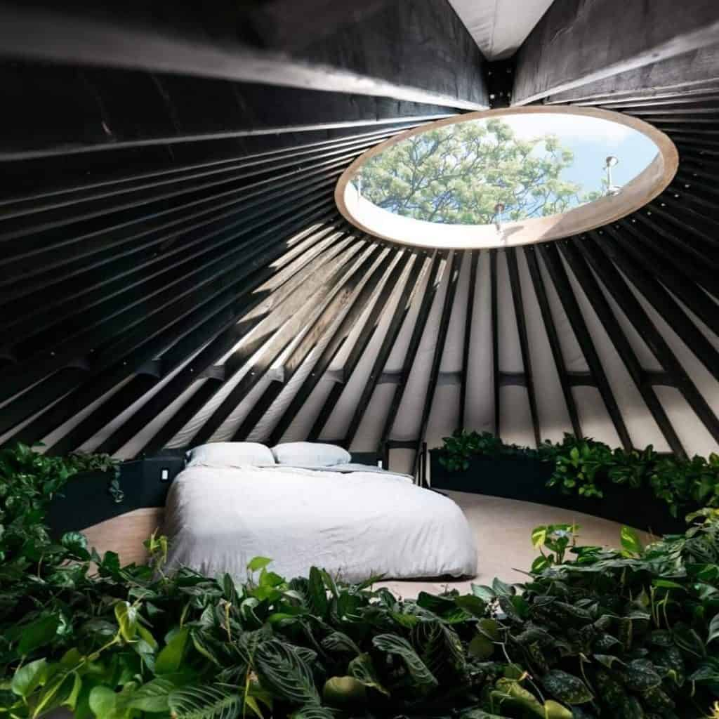 beautiful yurt home with plants