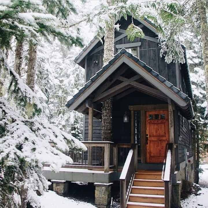 tiny home in the forest