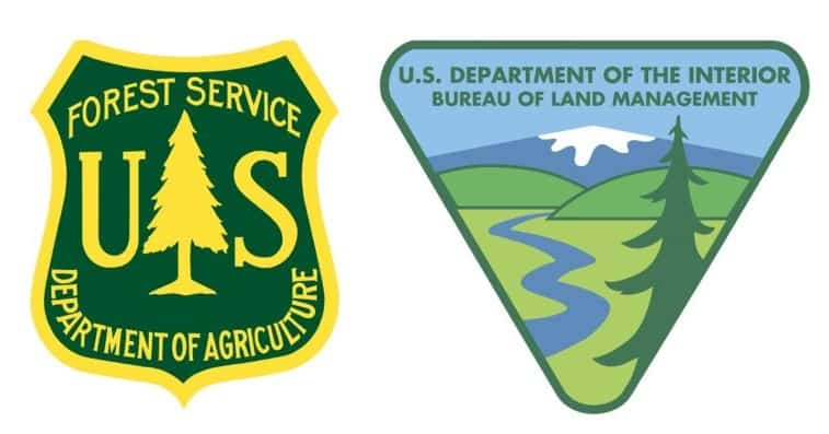 National Forest and BLM