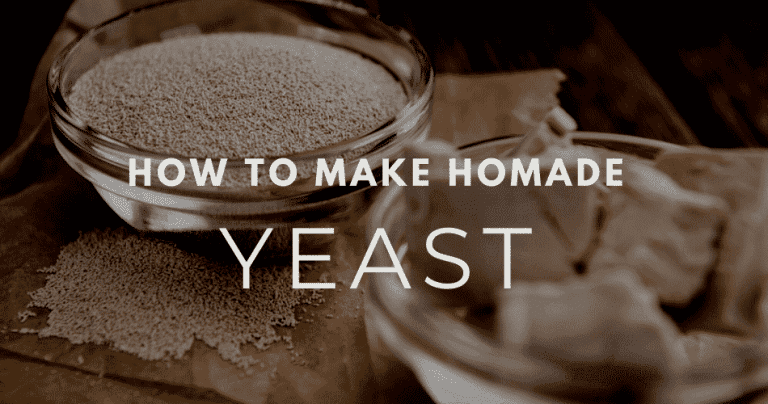 how make your own yeast
