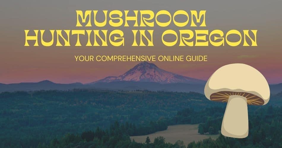 Mushroom hunting in Oregon