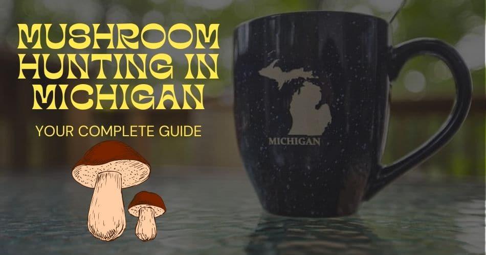 Michigan mushroom hunting